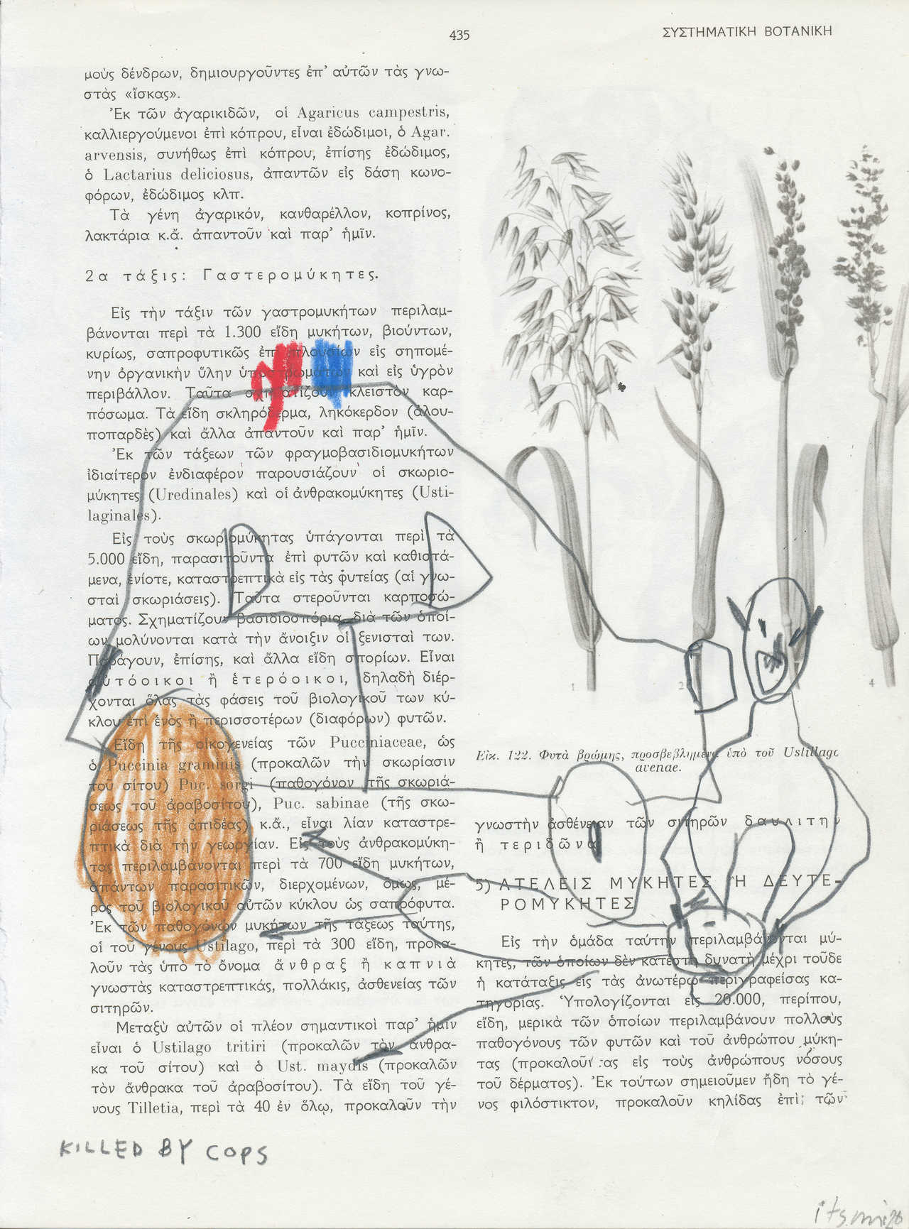 Killed by cops, 2020, μολύβι και ξυλομπογιές σε σελίδα βιβλίου Βοτανικής, 28Χ20,5 εκ.