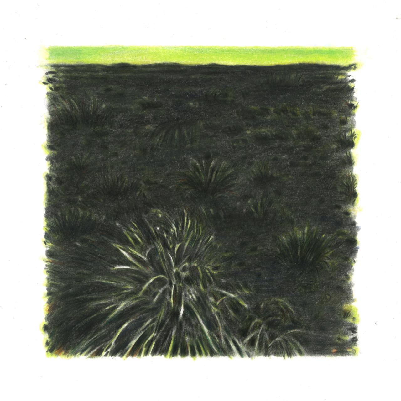 Green Hope, 2021, χρωματιστά μολύβια σε χαρτί, 23Χ23 εκ.