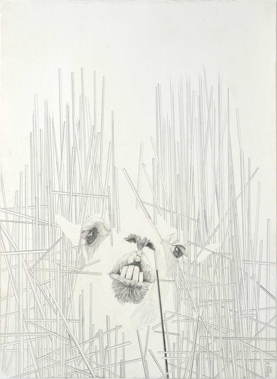 Άτιτλο, 2010, μολύβι σε χαρτί, 44x32 εκ.